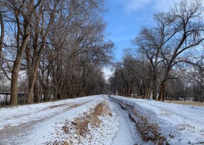 Bosque Trail